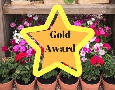 Team win Gold at BBC Gardeners' World Live